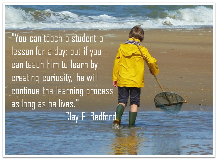 Twitter / suebecks: The Value of Teaching Curiosity ...