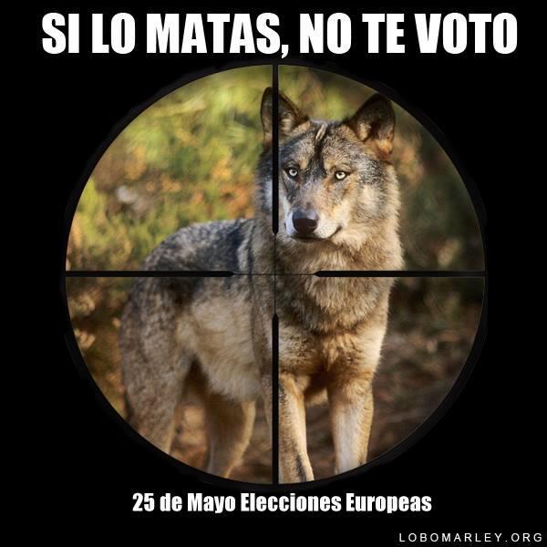 Campaña para las europeas con el objetivo d fomentar un voto responsable y consciente #SilomatasNOTEVOTO @Lobo_Marley http://t.co/rTwNFWHk7Y