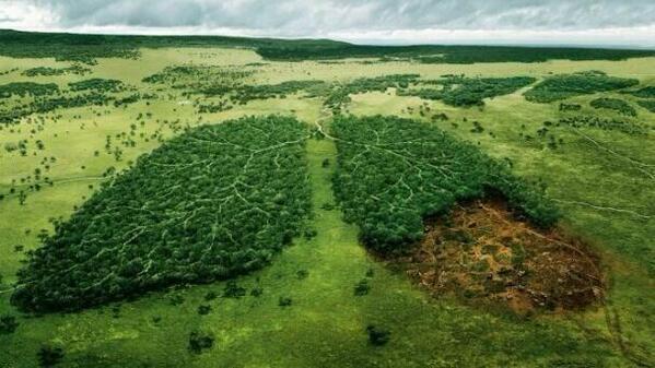 """Si la Tierra no respira, nosotros tampoco. Si pueden """"Retweet"""". http://t.co/Jvzalo2Y58"""