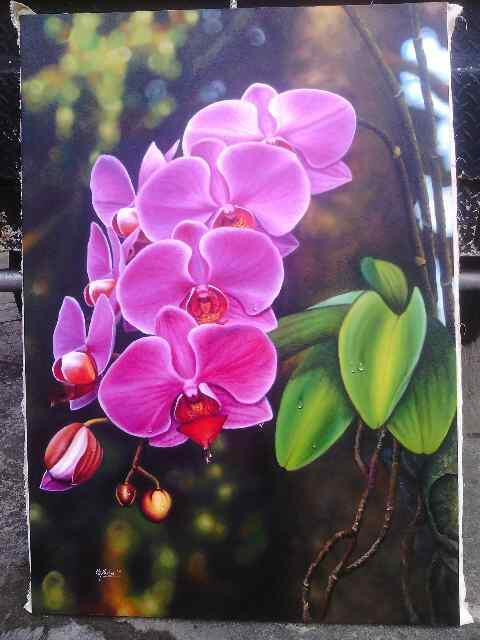 Gambar Lukisan Bunga Anggrek Bulan Gambar Bunga