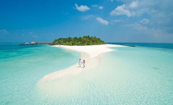 the sandy white crystal beaches of the maldives Maldives, the sunny side of life  to enjoy a one-of-a-kind picnic experience with beautiful sandy white beaches, plenty of vegetation, and crystal clear waters in.