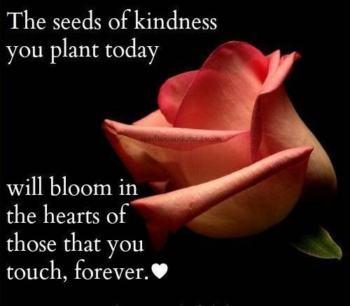 The seeds of #kindness you plant today will bloom in the hearts of those you touch forever.&quot; <br>http://pic.twitter.com/JunkL77E4M @liketunnels #JoYTrain