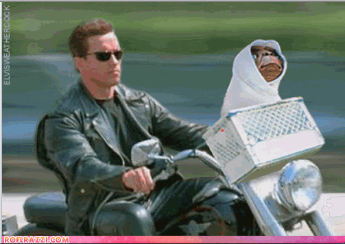Can't stop laughing at this. @holdentome @RealMattGillman @dawshog #ET #TheArnold #almostfriday http://t.co/D5K5vOQ1mP