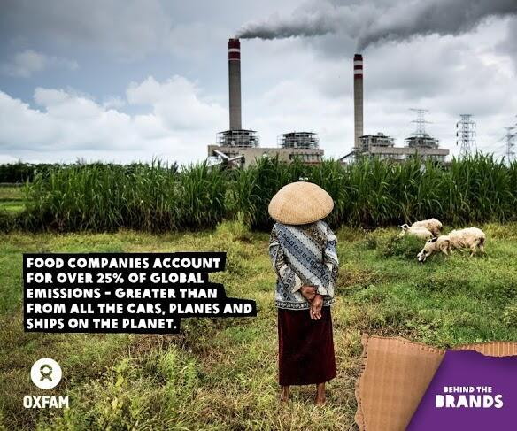 Twitter / GreenpeaceAustP: Food companies account for ...