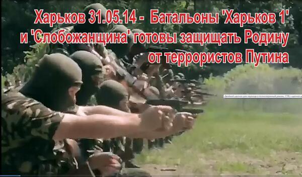 """Прокуратура на Донбассе """"ушла в подполье"""", - Махницкий - Цензор.НЕТ 3055"""