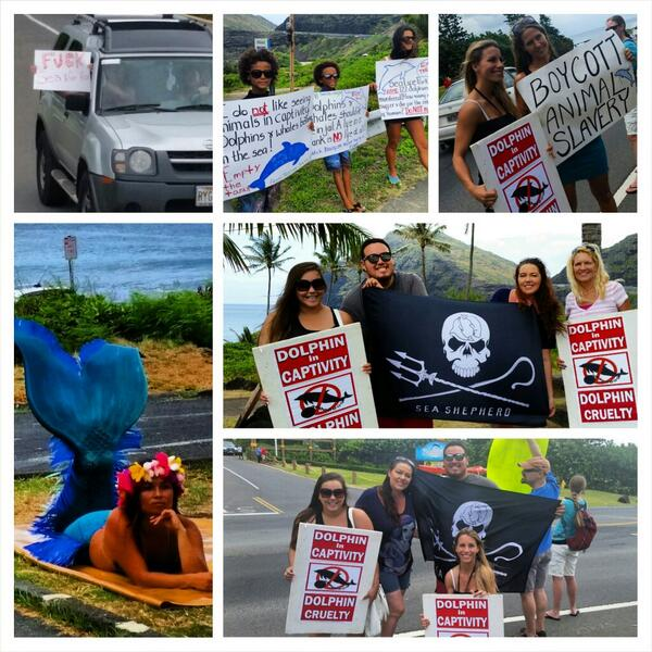 2day we protested captivity @ #SeaLifePark @HawaiiKaiGirl @BabyLyssaC @kianitsunami #SeaShepherdHawaii #emptythetanks http://t.co/wSPYAWpdnZ