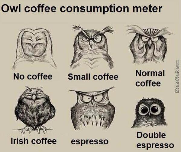 Friends Of Ours On Twitter Seems Legit Owl Coffee Consumption Meter Http T Co Pyloa2x6so