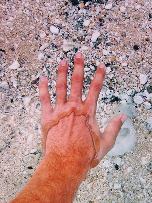 Very clear water. http://t.co/WHq7MAivLn