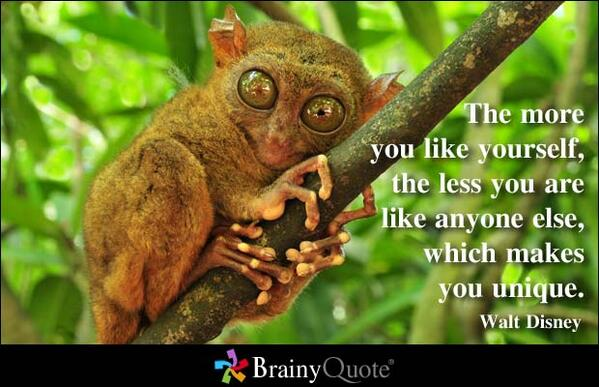 The more you like yourself, the less you are like anyone else, which makes you unique. - Walt Disney http://t.co/zVnfcOcgMk