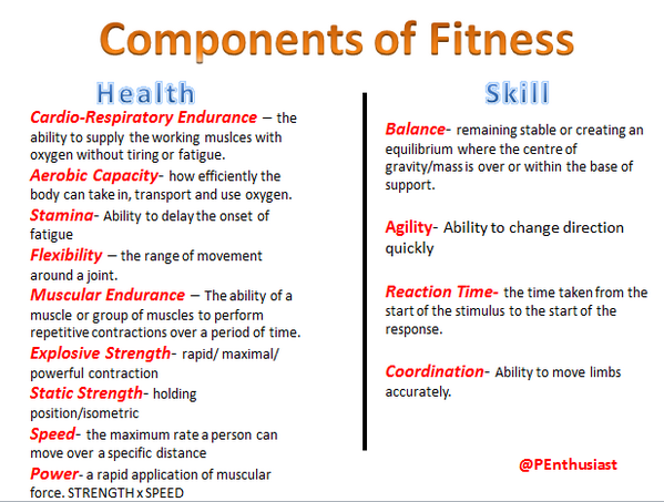 5 components of fitness essay 443-562-8483 info@baltimoreorchardorg home about us our story our partners our blog in the news.