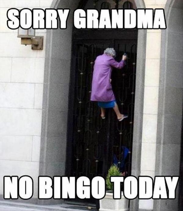 Bingo Card Memes On Twitter Good Morning Memeers Any One Witness