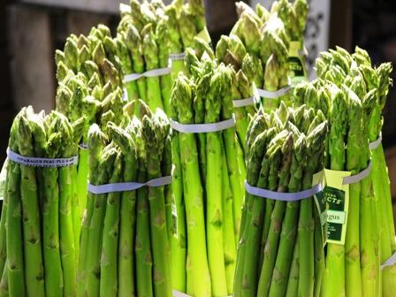 Did you know #Michigan ranks third in the nation for #Asparagus production with over 25 million pounds annually? http://t.co/FcvhzI8pGD
