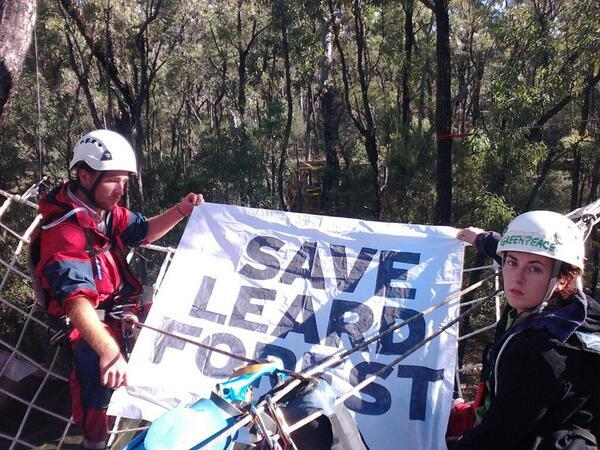 Twitter / GreenpeaceAustP: Our activists bear witness ...