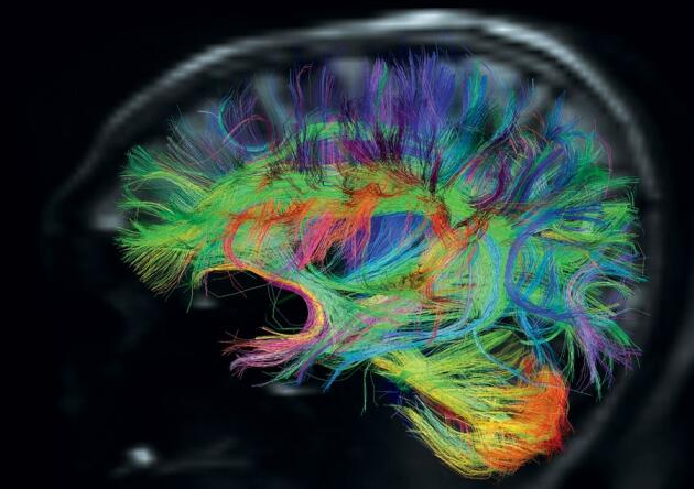 Twitter / weird_sci: Your brain makes a million ...