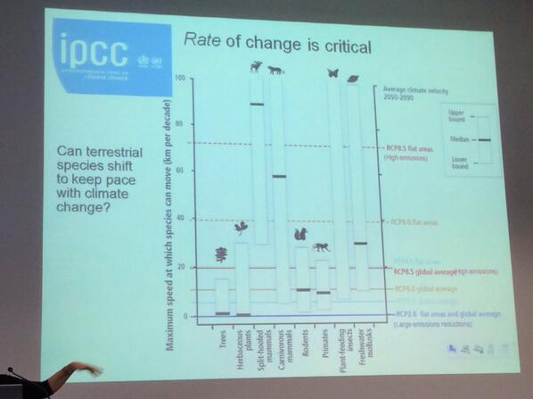Rate of change is critical, some species can move to adapt to cc quicker than others eg. Insects cf. trees #IPCCWales http://t.co/teVulLbG9T