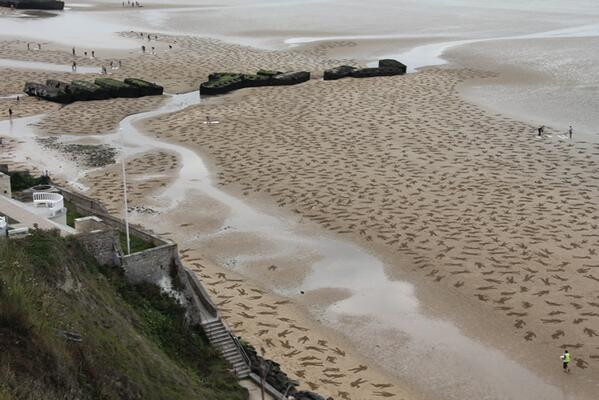 Thousands of bodies carved into the sands of Normandy to remember those who died on #DDay http://t.co/wlNt4d21Nw http://t.co/3dDmaoOZI1
