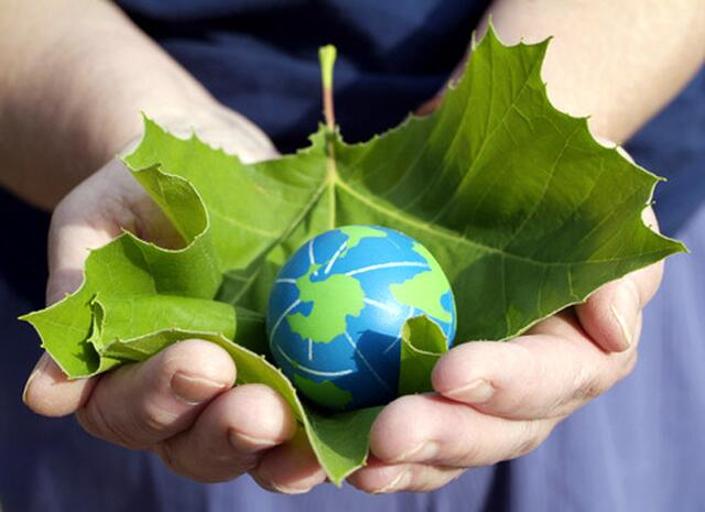 Twitter / RandstadCanada: Happy #WorldEnvironmentDay ...