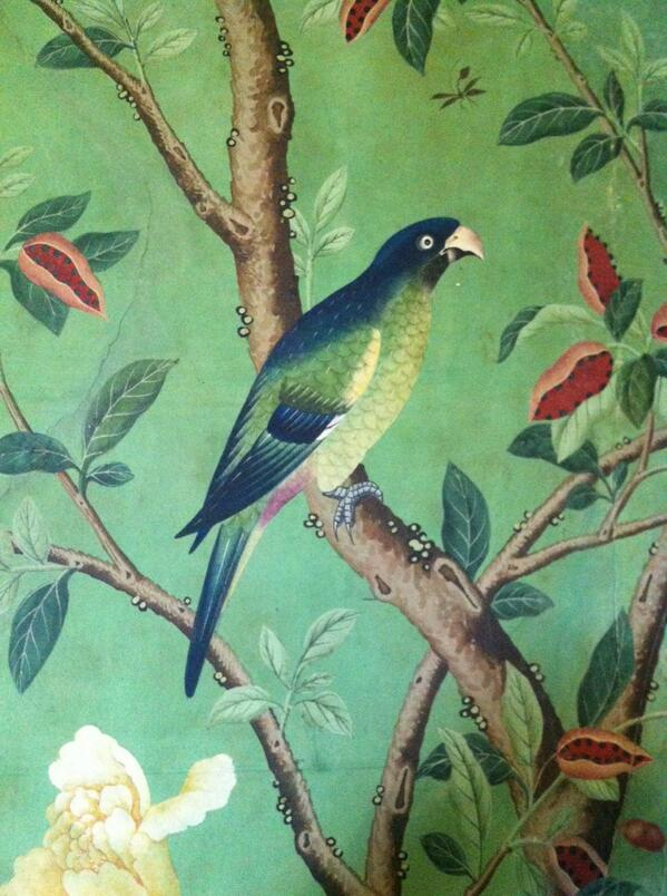 #ihbctweet parrots, fruits and flowers on the 1820s wallpaper extant at Abbotsford House http://t.co/d0AMw1SDut