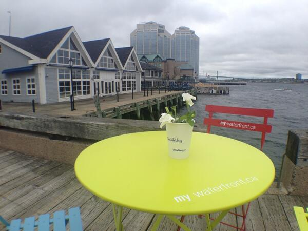 Great view! @100in1DayHFX @My_Waterfront  #TheUnfolding http://t.co/vrvnpfR0Ee