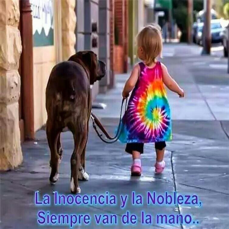 ===El Destino...=== BplwOEVCYAAc2x3
