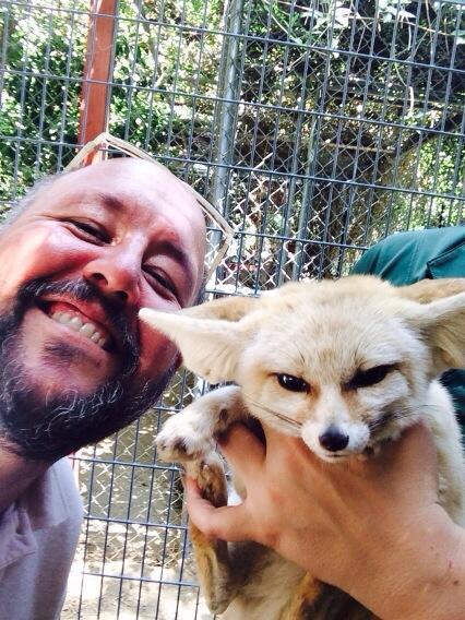 Fennec Fox selfie! #foxie? http://t.co/tPSDKSP5Q3
