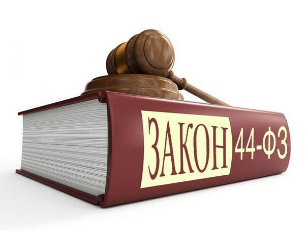45 статья федерального закона