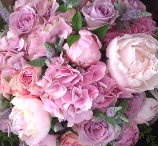 Andrea Patrick Byrne On Twitter The Most Beautiful Birthday Flowers Ever Simeonfarrar Realwildatheart Thank You XXX Tco Dh6rgULe9O