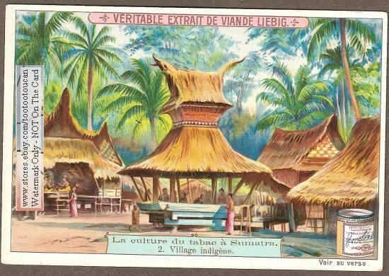 Kepala Suku Twitterissa Ini Adalah Postcard Tahun 1903