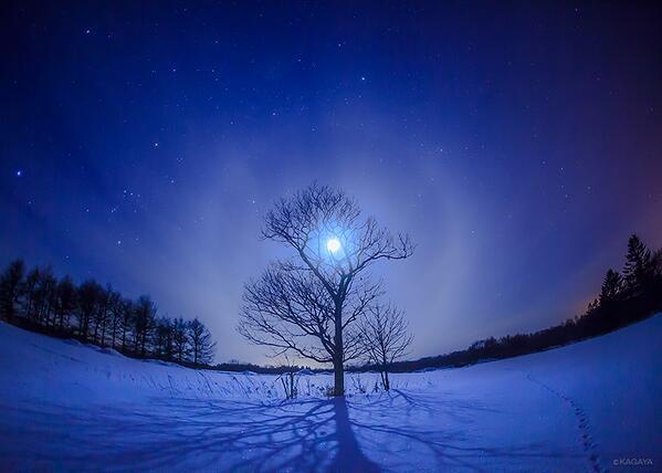 星も月も見えない今夜は道東で撮影した過去の写真から。寒空に月を灯して。 pic.twitter.com/OLMPQ50v06