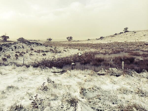 Snow on the Alpine Way just past Jindabyne #blizzard @abcnewsCanberra http://t.co/g7RgsnUWra