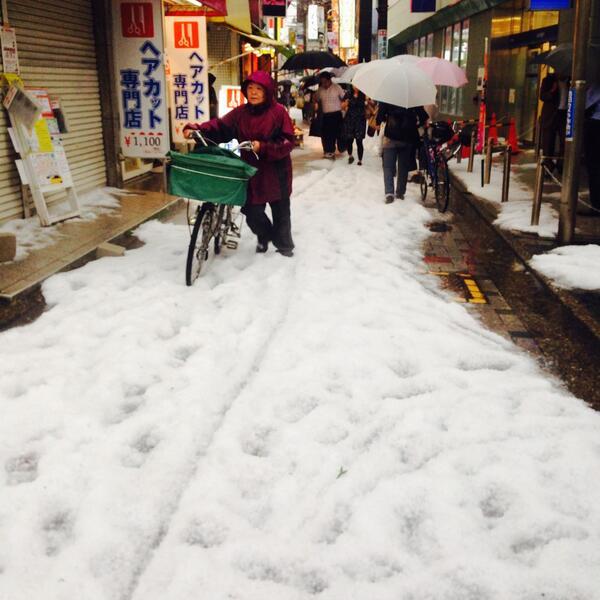 今、季節、なに?ただいま仙川ですよ。 pic.twitter.com/3ixtp3B1F7