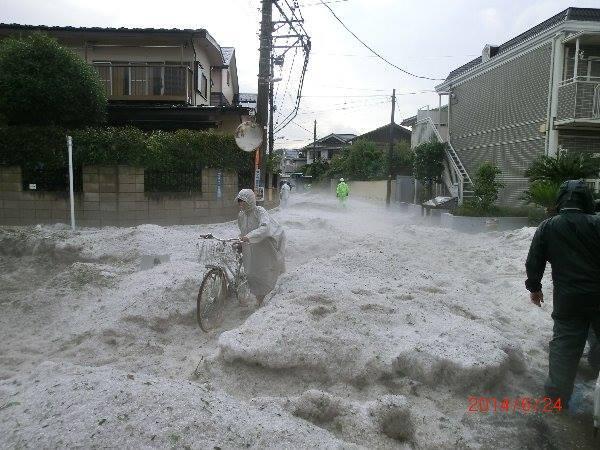 本日、調布や三鷹におそいかかった雹(ひょう)。今年の雪害を思わせる、信じられない光景。被害が心配です。 pic.twitter.com/bTFG3080z4