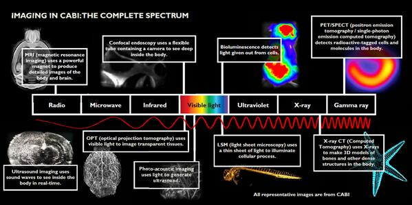 @royalsociety #asksummerscience What great questions! See the full spectrum of imaging modalies @ our disposal today! http://t.co/NKWidTAUwM