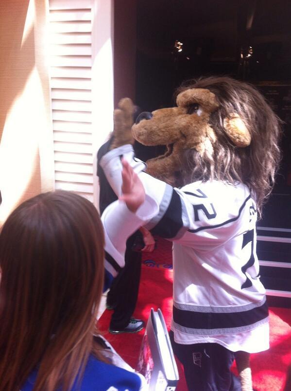 here's a stupid ass lion http://t.co/LqklTcfsTn
