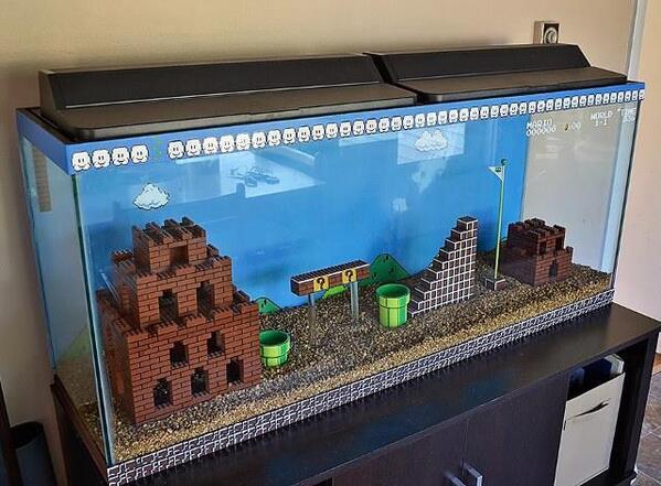 Sweet fishtank! http://t.co/NUqIMR3jNr