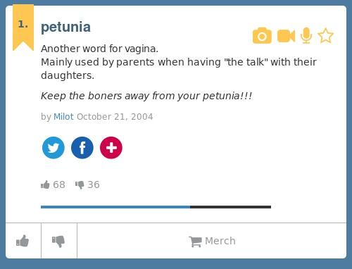 Anothe word for vagina — pic 13