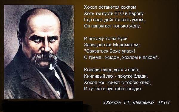 """Картинки по запросу """"хохол останется хохлом тарас шевченко"""""""