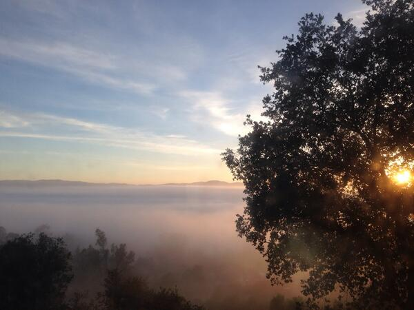 Morning Marine layer in the #Ramona Valley AVA #wine country near #SanDiego http://t.co/tLiOROA3gc