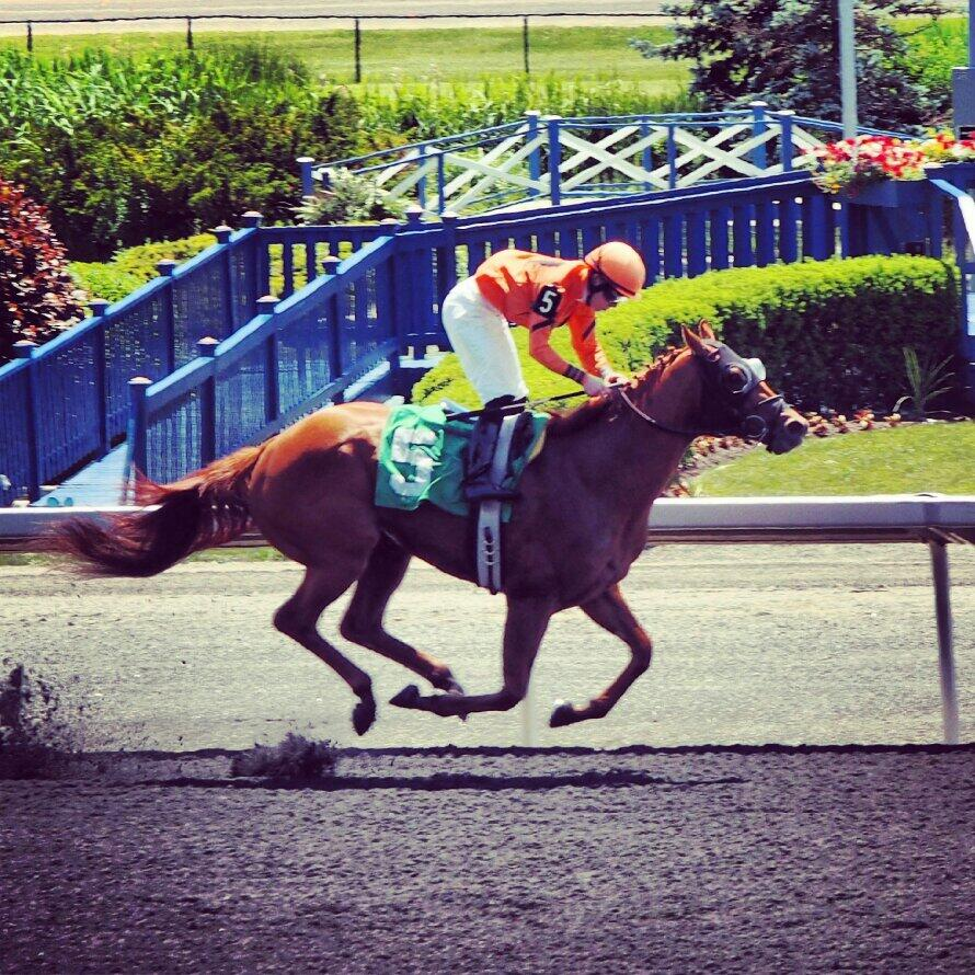 Twitter / WoodbineRacing: The #emmazing @EJWilson81 takes ...