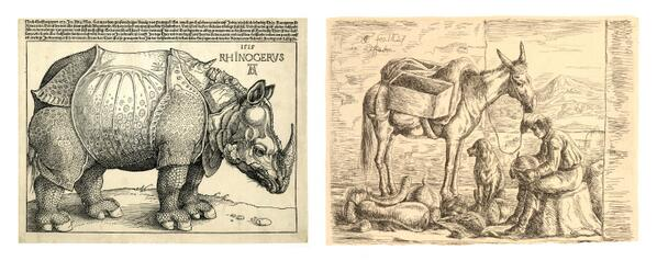 Dürer's Rhinoceros for #GER and a fruit-seller in #POR http://t.co/3Vga4yz51u http://t.co/uXxYWg6jlE #WorldCup http://t.co/EPHhanTxZF