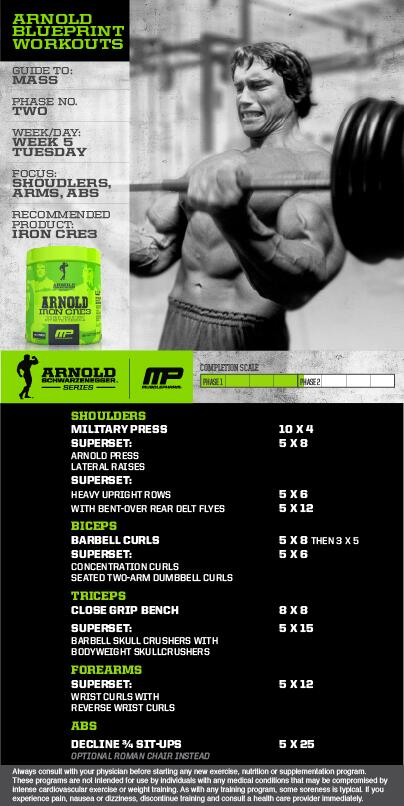 Musclepharm On Twitter Arnoldseries Blueprint To M Workout Week Shoulders Arms Abs By Arnold Schwarzenegger