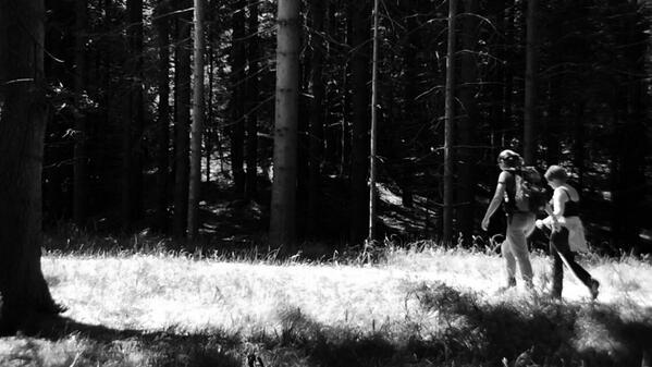 #Треккинг #файделлапаганелла #Paganella #paganelladaurlo @dolomitipaganel #vuance #Италия #трентино #Trentino #спорт http://t.co/suoF24PIhg