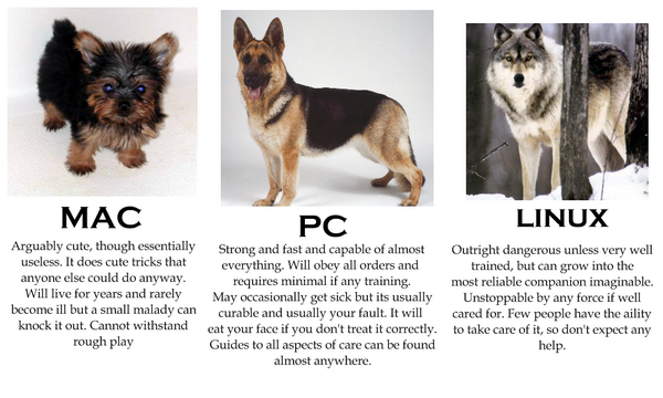 If computers were dogs http://t.co/lReNGk7aNC