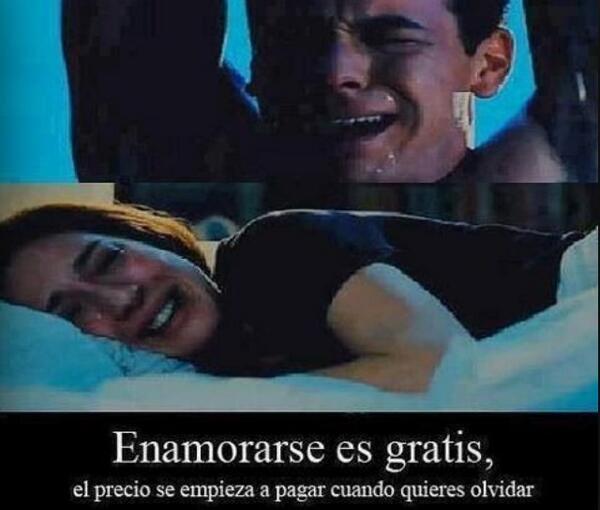 Frases 3msc Twitter પર Enamorarse Es Gratis El Precio