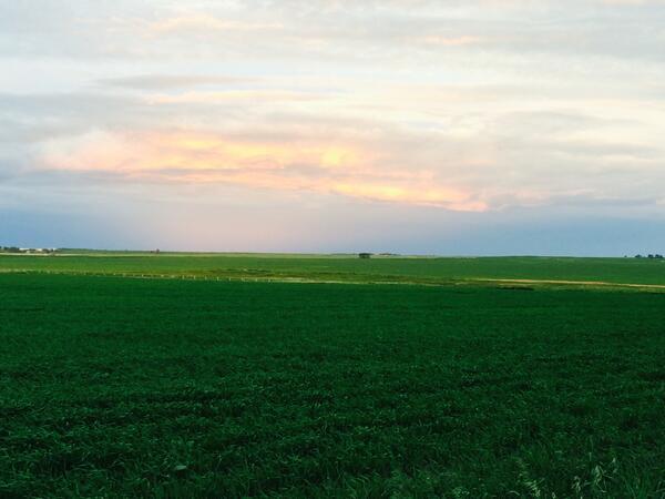 The other side of sunset! @HellOnWheelsAMC #hellonwheels http://t.co/u7LGeU09g1