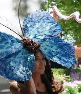 Twitter / TRThreston: Royal Ascot 2014 - Butterfly ...