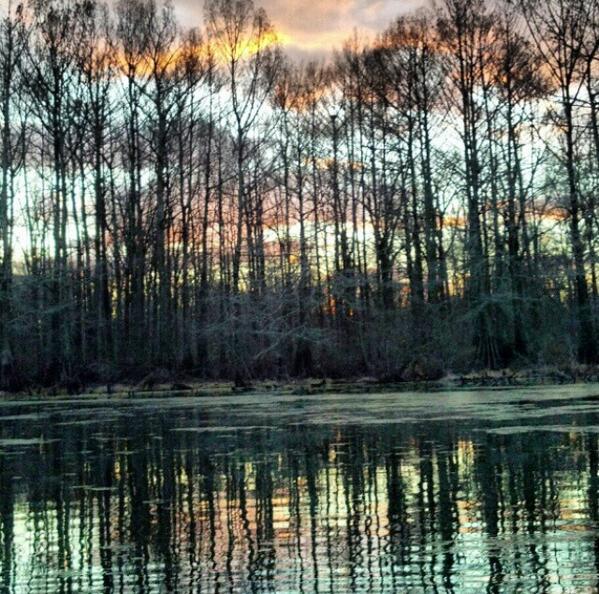 The south on twitter mercer bayou arkansas httptixlh6croke freerunsca Gallery