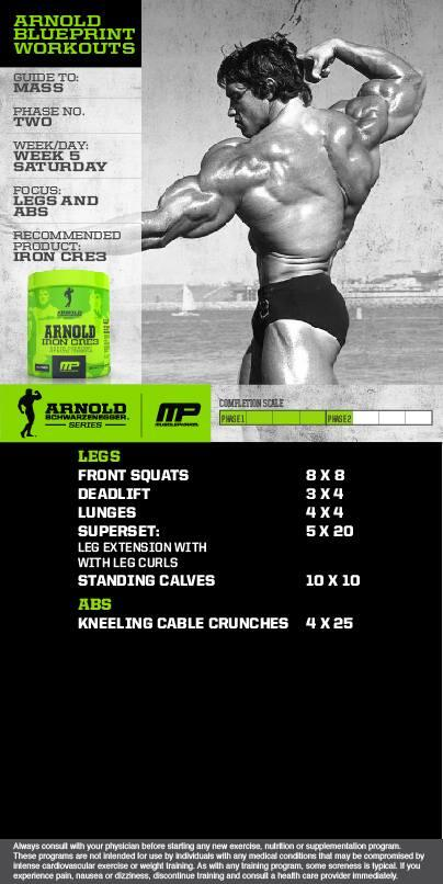 Musclepharm on twitter arnold series blueprint to mass workout musclepharm on twitter arnold series blueprint to mass workout week legs and abs by arnold schwarzenegger powered by ironcre3 httptu6zia3sldj malvernweather Image collections