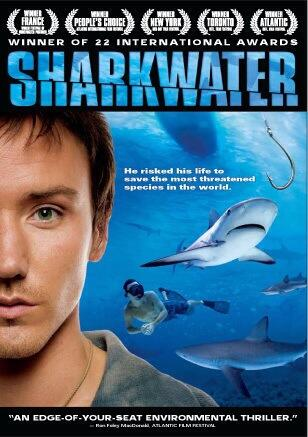Film maker Rob Stewart #sharkprotection battle with Guatemalan shark poachers http://m.youtube.com/watch?v=CI1YBCMqbik…pic.twitter.com/o6t1EWjWRH