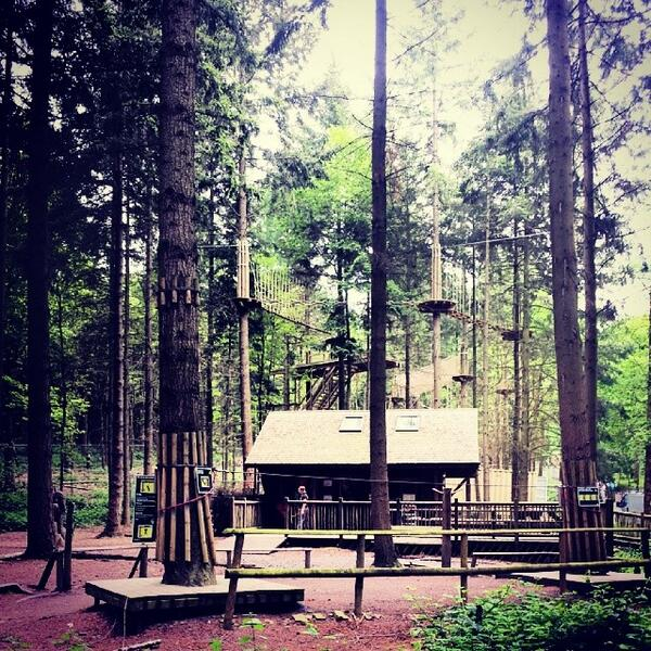 Go Ape On Twitter Tree Top Junior At Wyre Forest Officially Opens Tom Be One Of The First To Explore Our Latest Mini Tarzan Adventure Http T Co Gxiqooshww